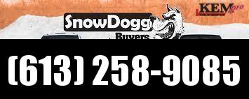 2021 SnowDogg Plow Snow Plow