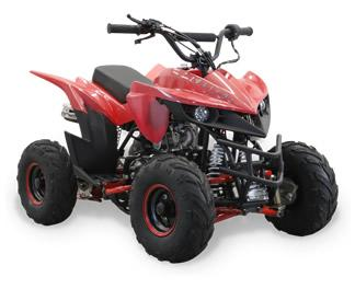 2020 110cc 4 Wheelers
