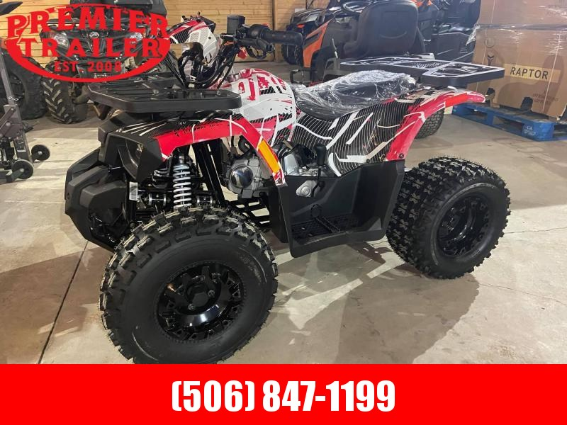 2021 Tao Raptor  youth ATV