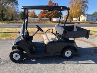 2008 EZ GO Freedom RXV Golf Cart