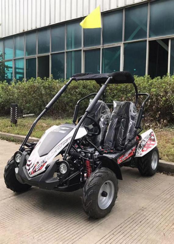 NEW TrailMaster Blazer 200 31MPH Go Kart age 8-13 White