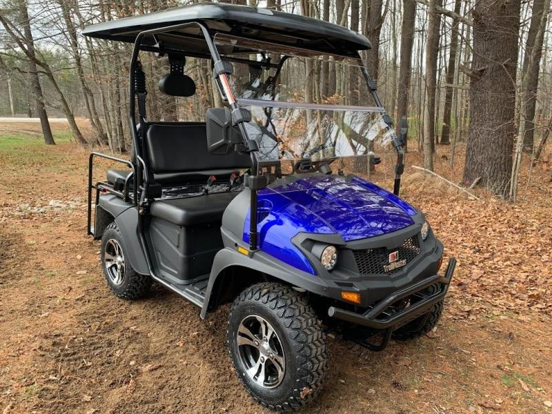 NEW 200GX 25 MPH GAS 4 passenger UTV style golf car BLUE w/low gear