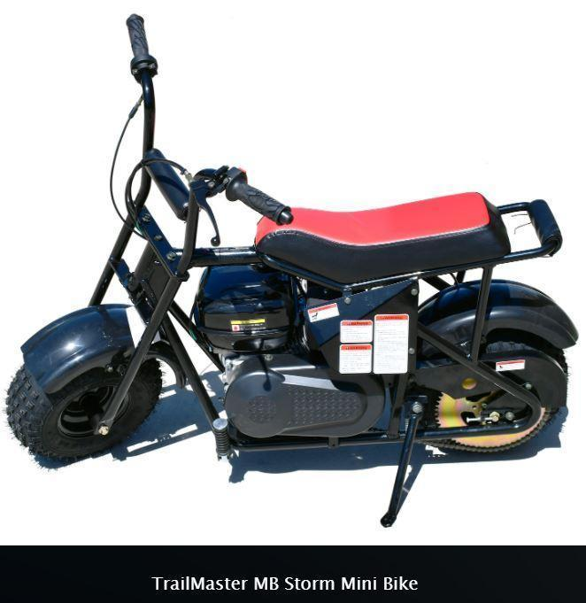 Holiday Special! New Trailmaster Storm 200 Mini Bike On-Off Road Fun!