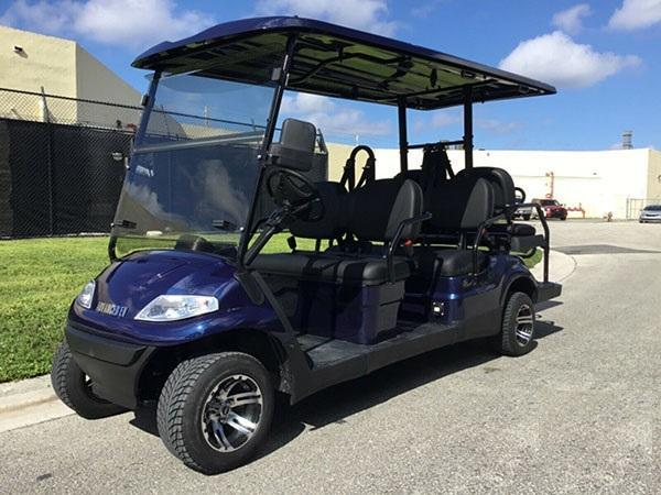 Summer Special!! 25 MPH NEW AEV LUXURY 48 Volt 6 PERSON electric golf car limo-Blue