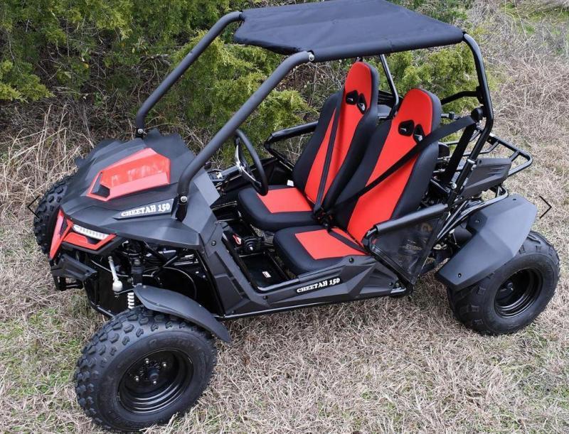 Trailmaster Cheetah 200 EFI Go Kart Teen-Adult 38 MPH SPORT UTV RED