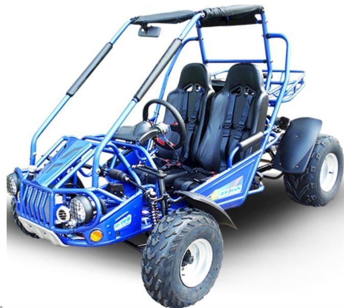 NEW Trailmaster 300XRS Go Kart size ages 12-adult EFI 300CC 50MPH