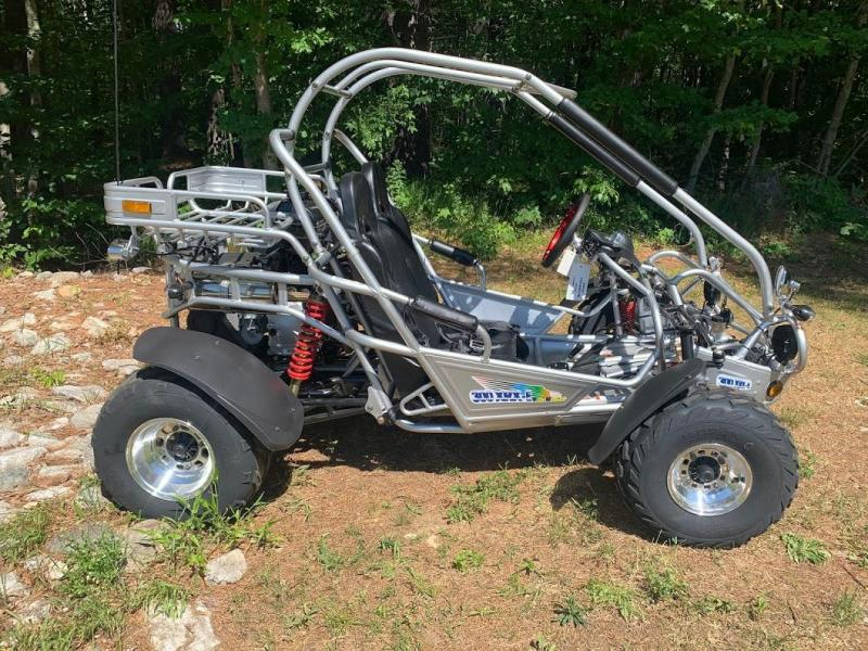 Trailmaster 300XRX EFI DELUXEGo Kart  size ages 12-adult 50MPH SILVER