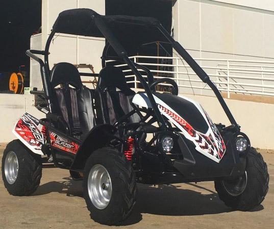 NEW TrailMaster Blazer 200R 31MPH Go Kart age 8-13 White