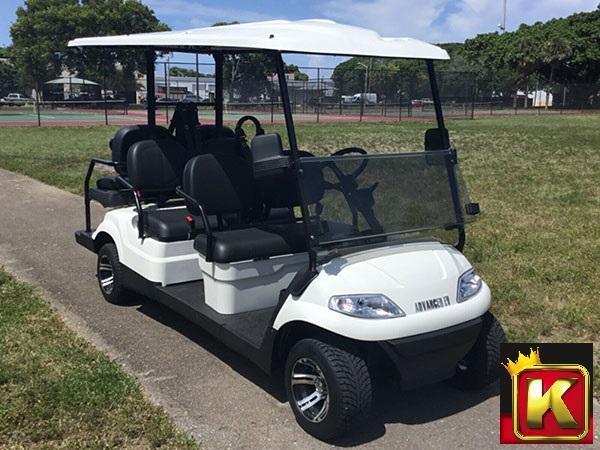 2021 Advanced EV LUXURY 48 Volt 6 PASSENGER golf cart limo-White  (compare to ICON i60)