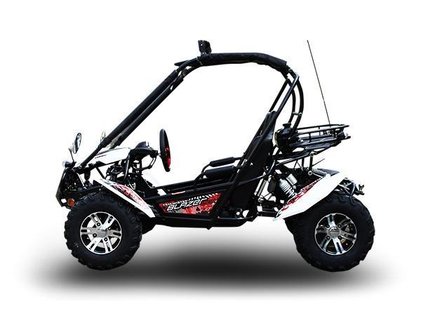 NEW Trailmaster Blazer 200-EXGo Kart Teen-Adult 43MPH REVERSE-White