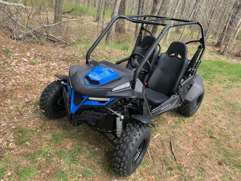 Trailmaster Cheetah 200 EFI Go Kart Teen-Adult 38 MPH SPORT UTV BLUE
