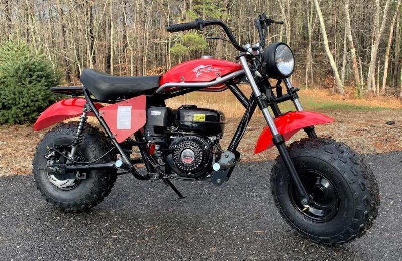 2020 Trailmaster MB200 Mini Bike Motorcycle