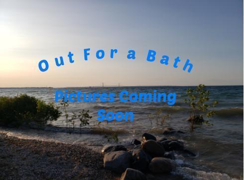 2021 Genesis 20' Tandeam Axle Float On Pontoon Boat Trailer