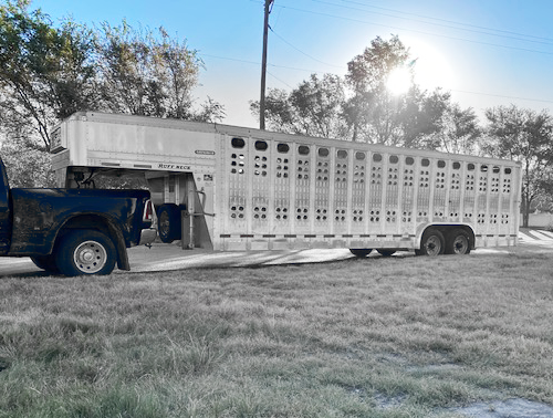 2022 28' EBY Punch Side Stock Trailer