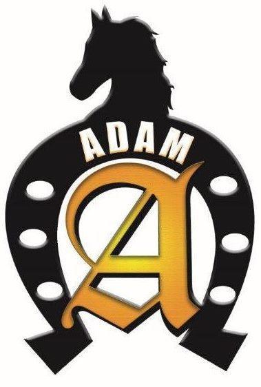 2017 Adam 2 Horse Slant Trailer