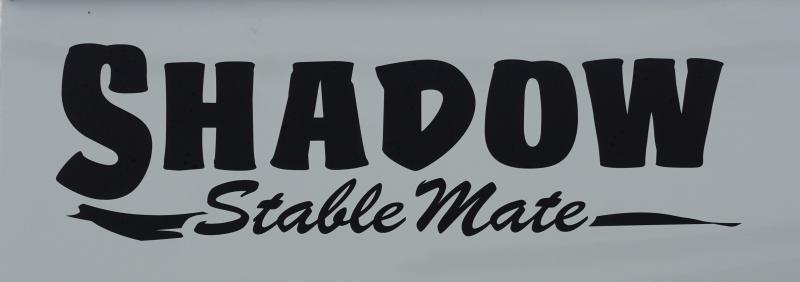 2020 Shadow Stable Mate 64170W-3SL-BP-E