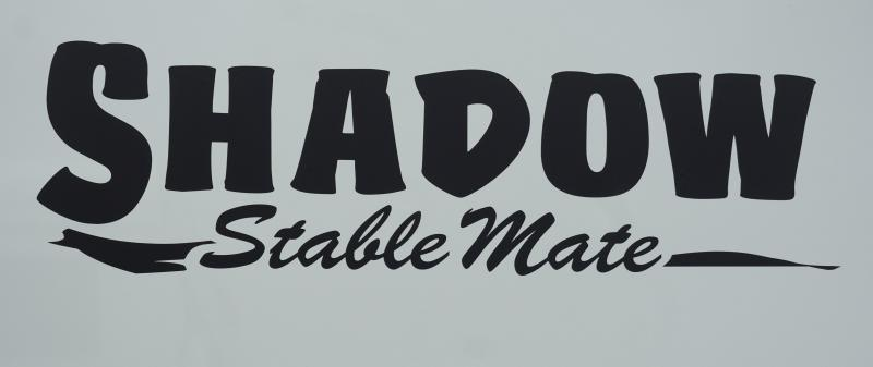 2020 Shadow Stable Mate 64136STK-2SL-BP