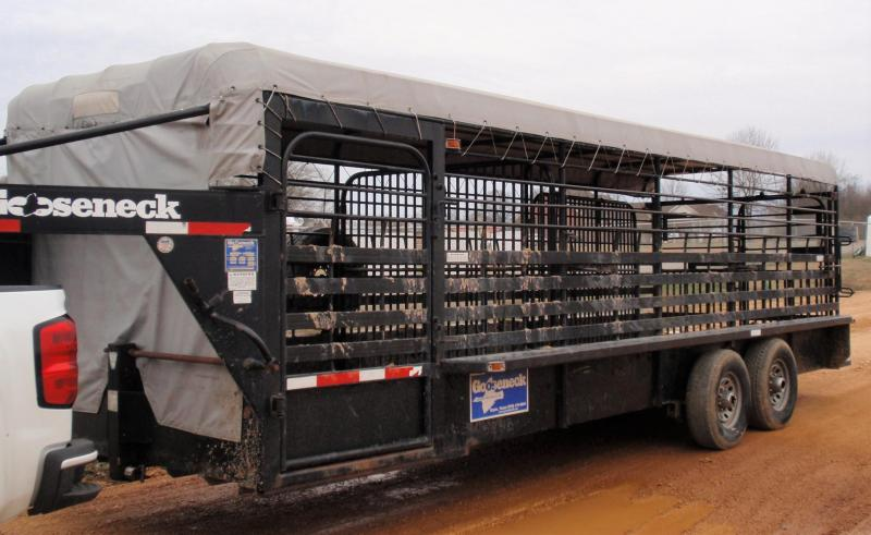 2007 GOOSENECK STOCK TRAILER