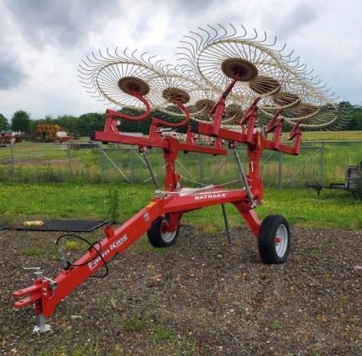 2020 FARM KING 8 WHEEL BAT RAKE Hay / Forage