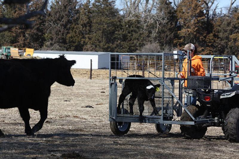 2017 Safety Zone ATV Calf Catcher