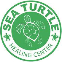Sea Turtle Healing Center