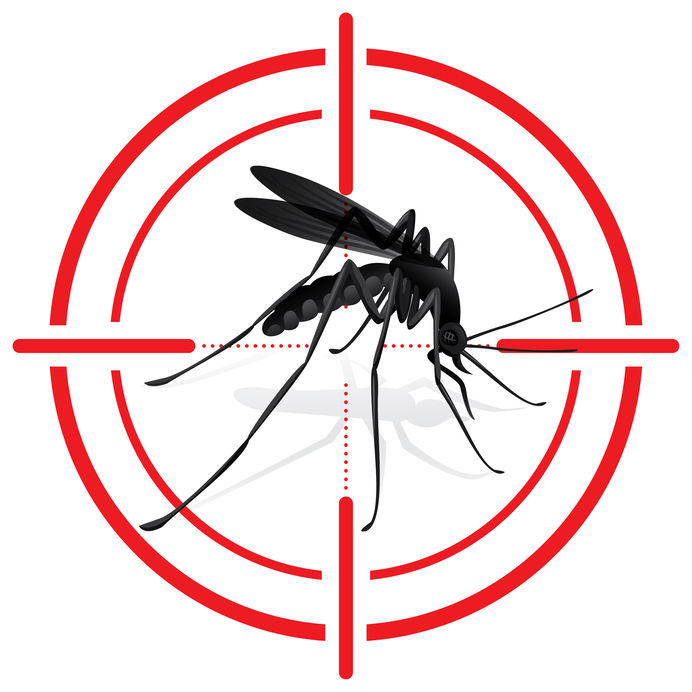 pest control for trailers