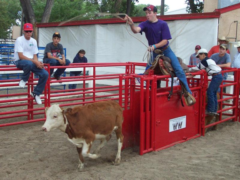 2020 WW Livestock Horse Saver Rodeo Chute