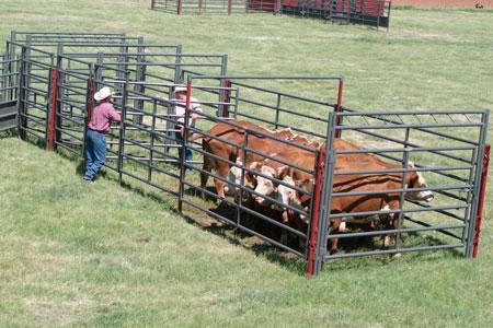 2020 WW Livestock EZ Duz It Livestock System