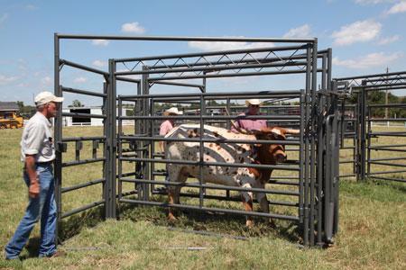 2020 WW Livestock Longhorn Chute