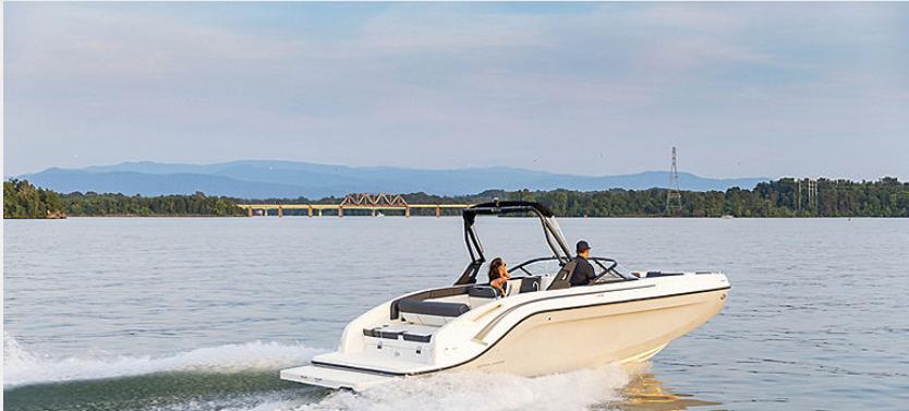 Bayliner Boats DX2250