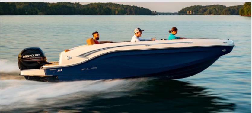 Bayliner Boats DX2000