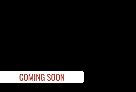 2021 Coachmen APEX ULTRA LITE 251RBK