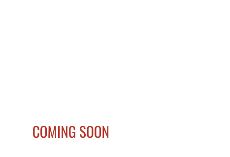 2021 Coachmen APEX NANO 208BHS