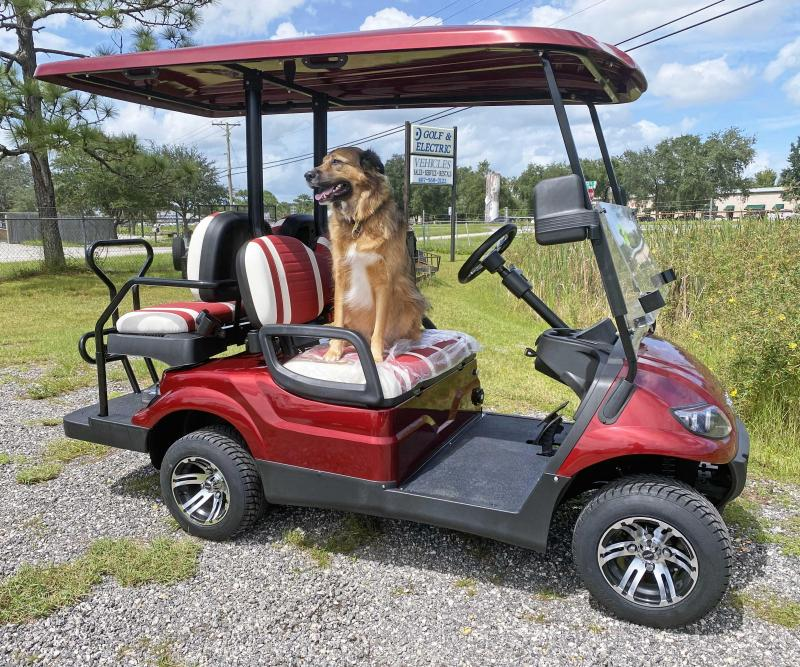 2020 IconEV i40 - Burgundy 4 Passenger Cart