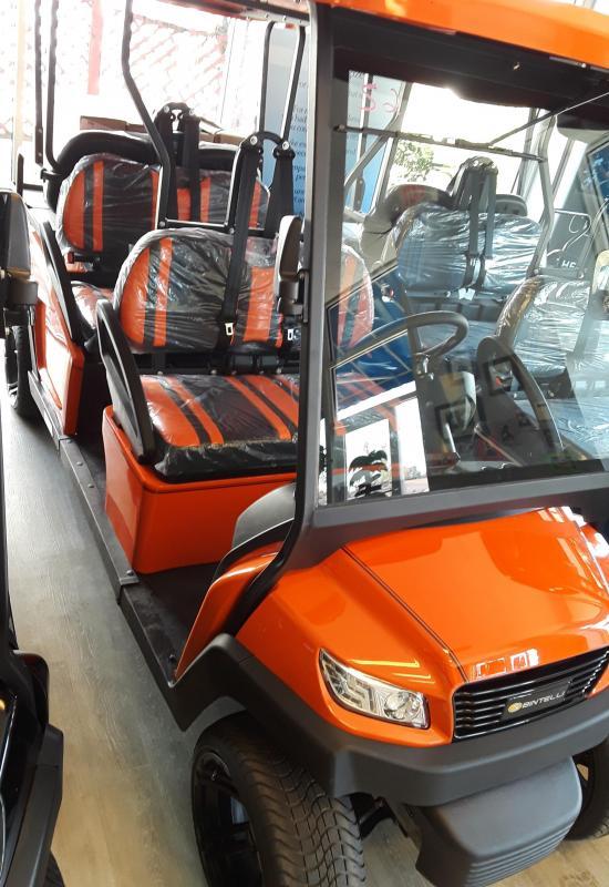 2021 Bintelli LSV6P Standard Golf Cart